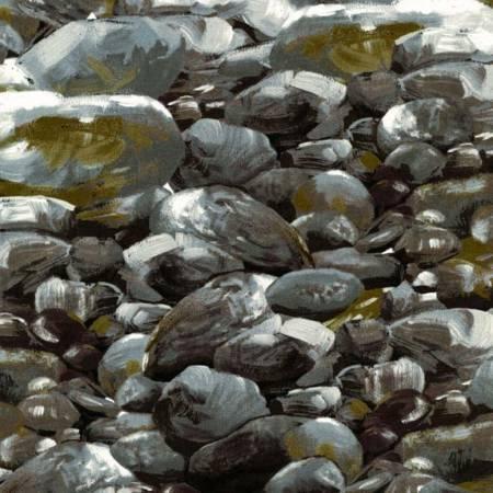 Gray Just Rocks