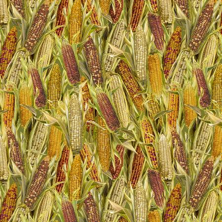 Timeless Treassures Gather Here CM7657-Multi Harvest Corn w/Metallic