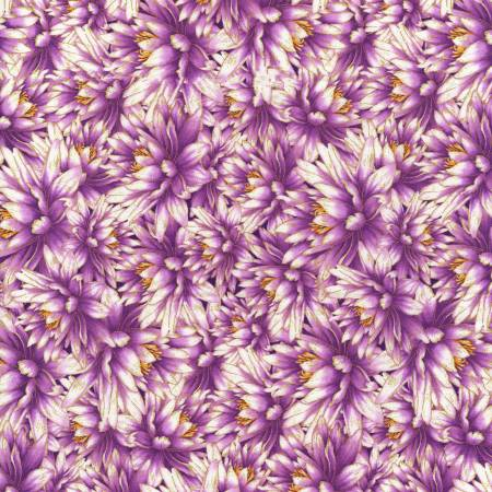 Water Dance Purple Packed Water Lillies w/Metallic