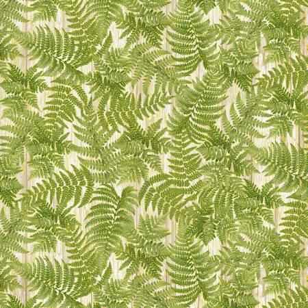 Green Packed Green Ferns