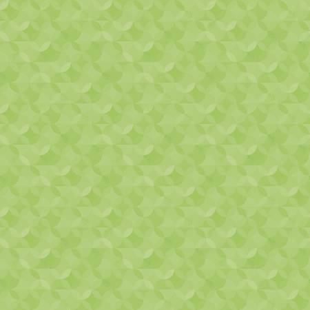 CR480-KEYLIME Crayola Kaleidoscope Key Lime Riley Blake