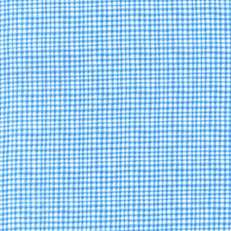 Blue Gingham Play Fabric by Michael Miller