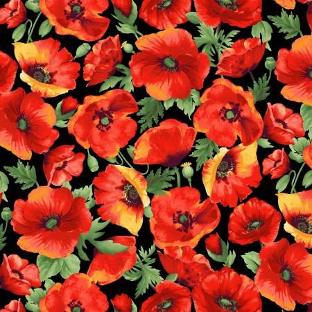 Blooms of Beauty - Orange Poppies