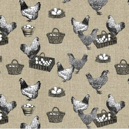 Khaki Chickens Which Came First