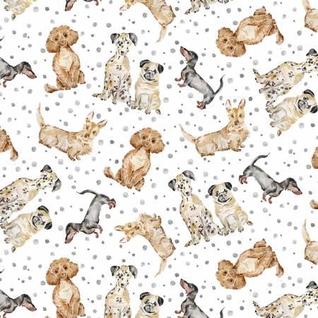 Gray Precious Dogs cx9240-gray