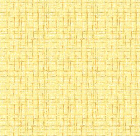 Lemon Blender Texture