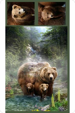 Hoffman Grizzly Digital Cuddle 34in x 44in Panel & 13x13in Pillow Panels
