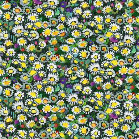 Yellow Lawn Daisies