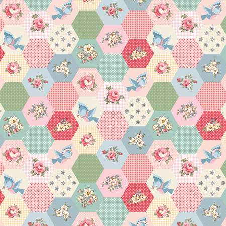 Dots and Posies Multi Birds Hexie DP20421