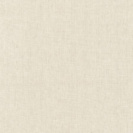 Limestone Essex Yarn Dyed Homespun