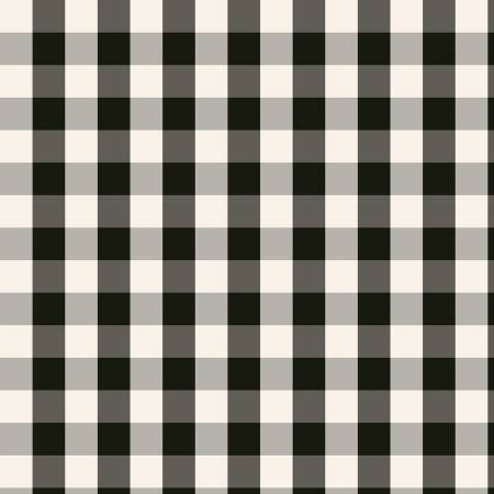 Black and White Plaid Flannel:  WInterberry by My Mind's Eye for Riley Blake Fabrics