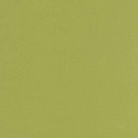 Kona Solid Olive