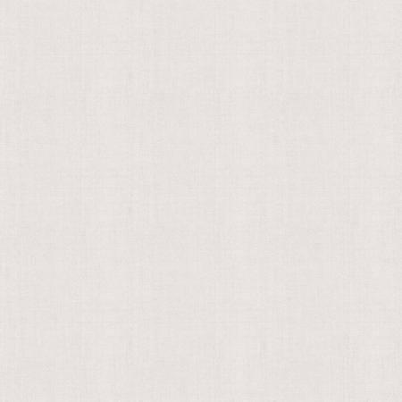 Off White Linen 58/60