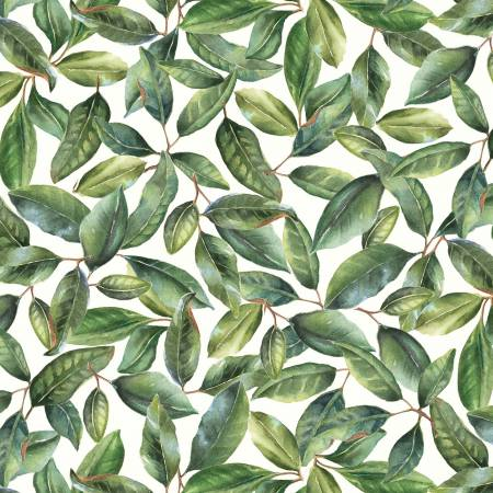 Magnolias - Green Leaves MAGN4254-G