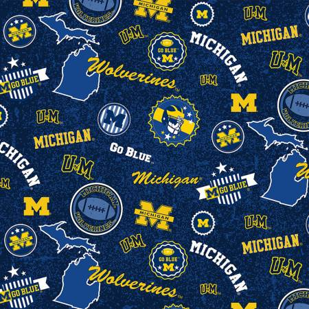 NCAA-Michigan Home State Minky 60 wide