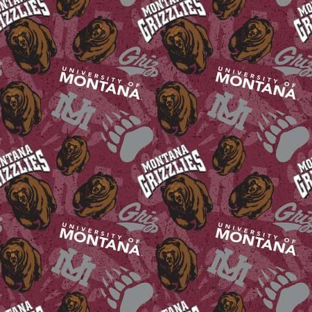 NCAA-Montana Grizzlies Tone on Tone