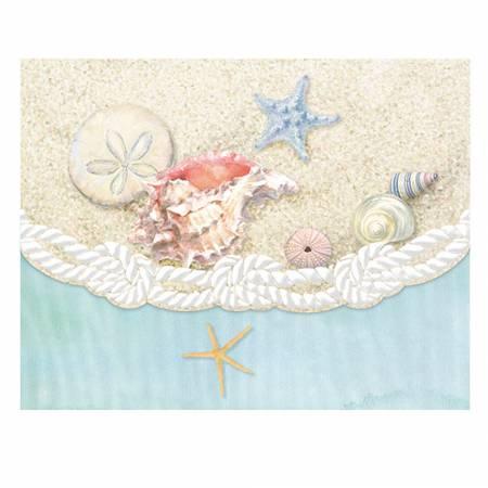Mini Portfolios Sea Shells