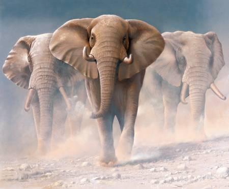 On Safari Elephant Poster Panel