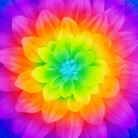 Prism Large Flower 43in x 43in Digitally Printed