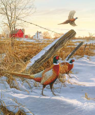 Winter Pheasant Panel