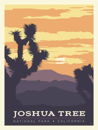 JOSHUA TREE NATIONAL PARKS PANEL P8791 by Riley Blake