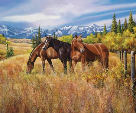 Riley Blake - High Horse/Foothills - PD11120-FOOTHILLS - W42