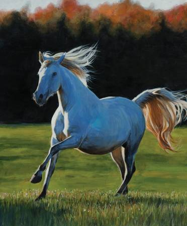 High Horse Full Gallop 36in Panel (Digitally Printed)