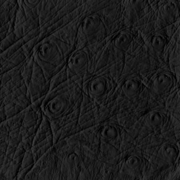 Pleather Kit 1 Black Ostrich Faux Leather Strap & Trim