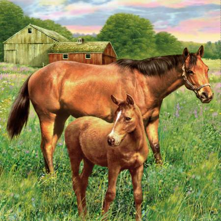 Hold Your Horses Mare and Foal Panel