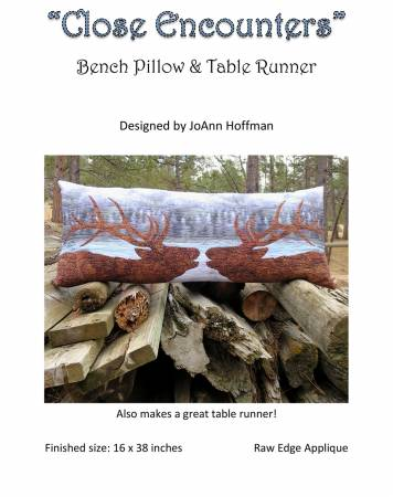 Close Encounters Bench Pillow Kit