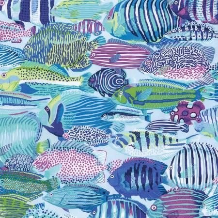 Natural World lagoon fish