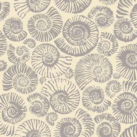 Cream Ammonites