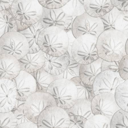 Nature's Narratives - Sanddollar