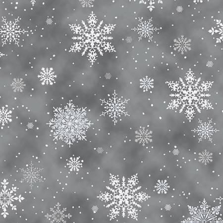 Storm/Silver A Winter's Sky w/Metallic
