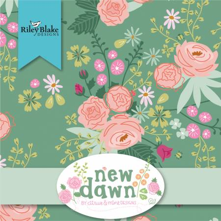 2-1/2in Strips New Dawn, 40pcs