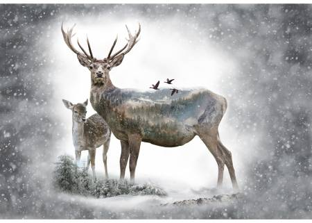 Dawn Call of the Wild Deer Panel 30in x 43in