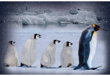 Arctic Blue Call of the Wild Penguin Panel 29in x 43-1/4in