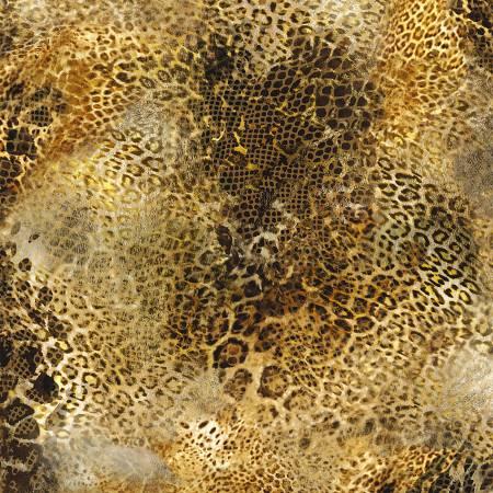Meet Me In Paradise - Cheetah
