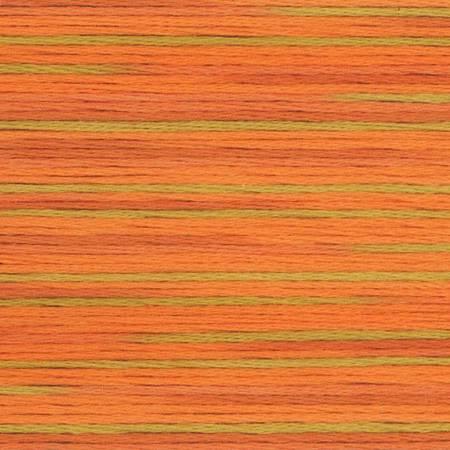 5008 Cosmo Seasons Variegated Embroidery Floss Orange Green