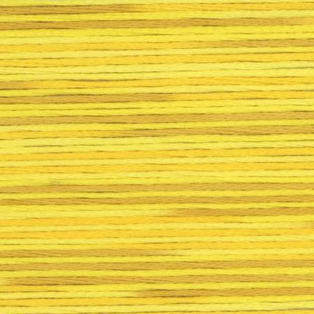 Lecien Cosmo Seasons Variegated Embroidery Floss 5009
