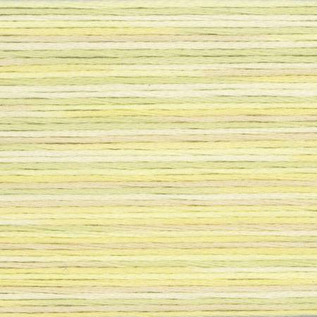 Cosmo Seasons Variegated Embroidery Floss