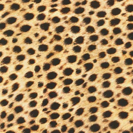 Animal Kingdom - Wild Cheetah Skin Digital Print