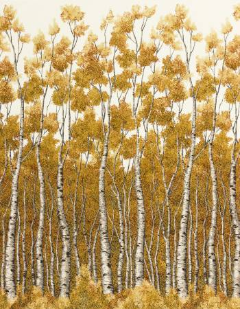Natural Wildwood Grace Birch Trees