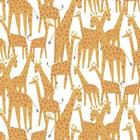 Stella - White Giraffes - 1217