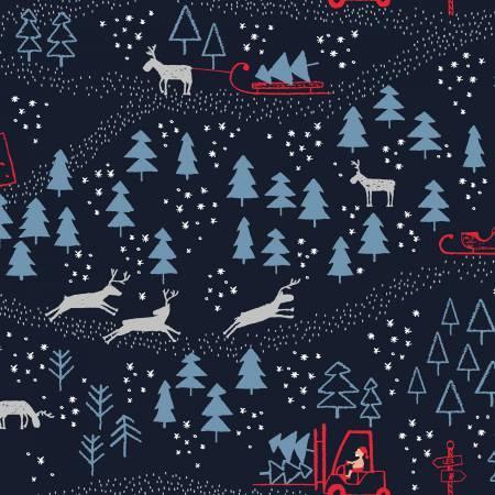 North Pole After Dark