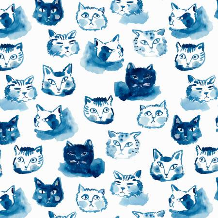 White Blue Cat Expressions