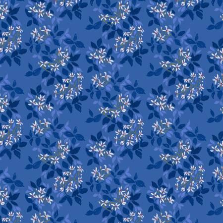 DEARS- American Summer Blue Indian Hawthorne