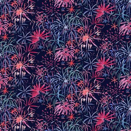 American Summer Fireworks in Multi