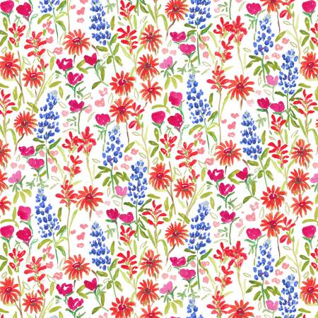 American Summer White Texas Wildflower