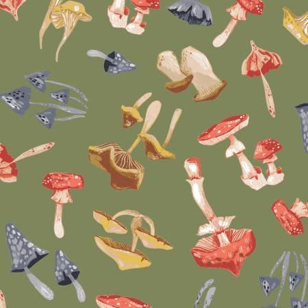 DEARS- Moss Mushrooms